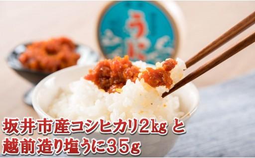 [A-1751] 坂井市産コシヒカリ 2kg と 越前造り塩うに 曲物入り 35g