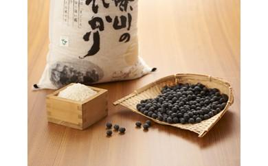 地域限定特別栽培こしひかり 5㎏ 丹波篠山産黒大豆300g