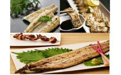 鹿児島県大隅産 千歳鰻の白焼き鰻 2尾