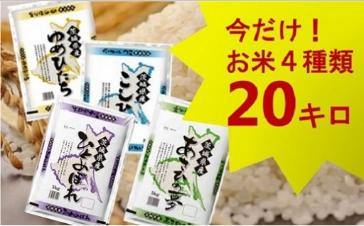 (576)【平成30年産】茨城県のお米4種食べくらべ20kgセット(道の駅さかいセレクション)