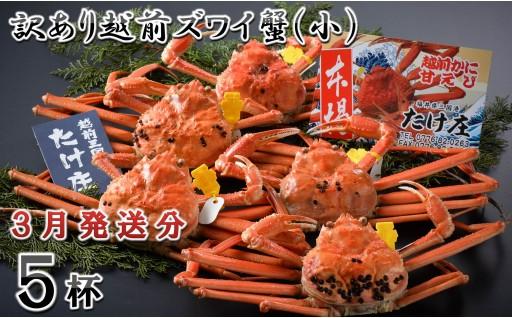 [G-1601] 【3月発送分】訳あり越前ズワイ蟹(小) 5杯