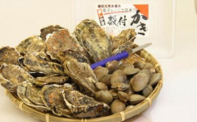 厚岸産牡蠣・あさりセット