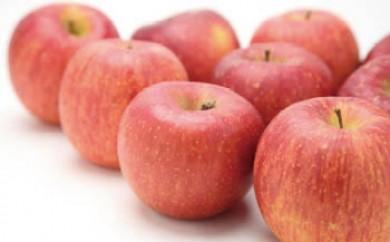 【数量・期間・ネット限定】【平成30年度リンゴの頒布会】リンゴ10kg×3回頒布(配送9月・10月・11月‐各月下旬)