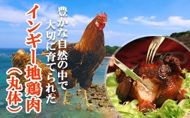 インギー地鶏 丸体 1.5kg以上