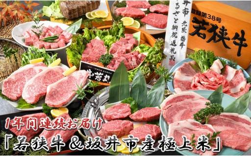 [T-1801] 【12ヶ月連続お届け】  『若狭牛 & 坂井市産極上米』 ~やっぱこれだね!美味しいお肉と美味しいお米~