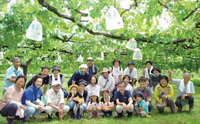 七ふしぎ農場体験(7品)