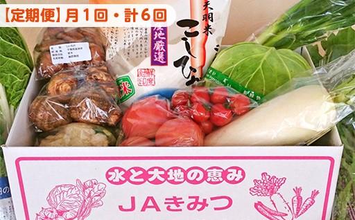 【月1回・計6回】季節の採れたて野菜 おまかせセット