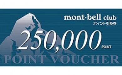 モンベル ポイント・バウチャー 250,000 Pt