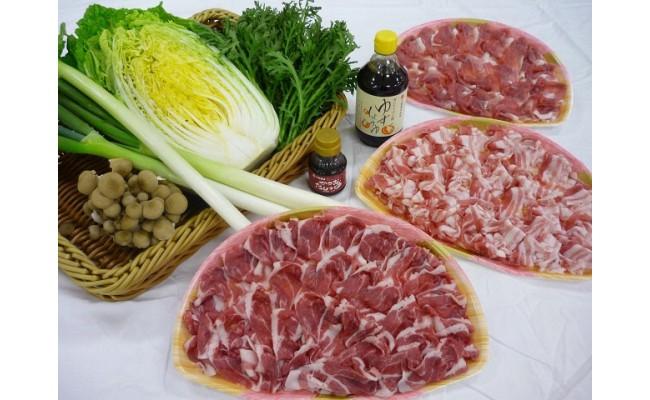 5か月目:しゃぶしゃぶ肉とサンピコごうつの季節の野菜セット