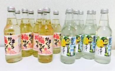 鎌倉酒販協同組合「かまくら梅サイダー、鎌倉ゆずサイダー 各8本 計16本」