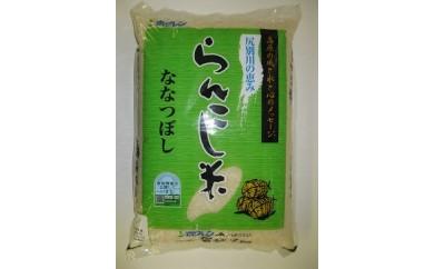 ようてい米「ななつぼし」10kg