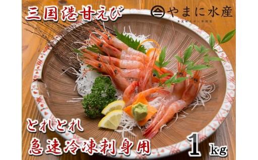 [A-4301] 三国港甘えび 1kg とれとれ急速冷凍刺身用