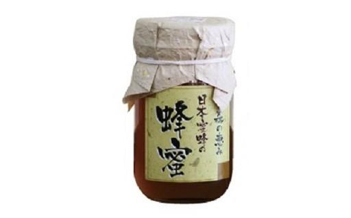 B029 七ツ森の恵み 日本蜜蜂の蜂蜜(1㎏)