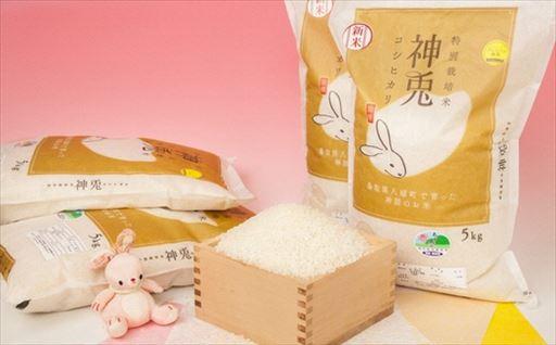 Y042 特別栽培米コシヒカリ20kgセット