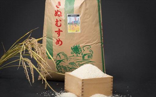 Y040 お米きぬむすめ(玄米)30kg