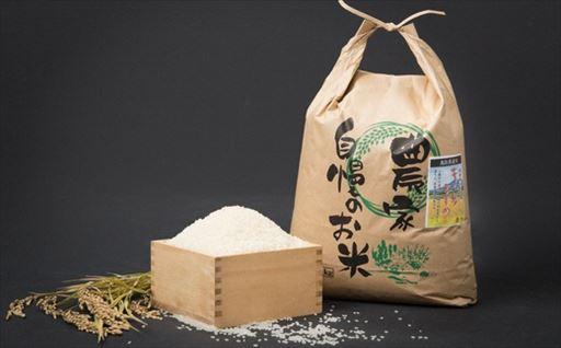 Y038 お米きぬむすめ8kg