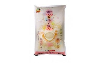 ★2017年収穫★ 恋の予感 三原・本郷産 10kg (5kg入り2袋)