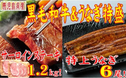 【I-348】うなぎ6尾とA4黒毛和牛サーロインステーキ1.2kg!