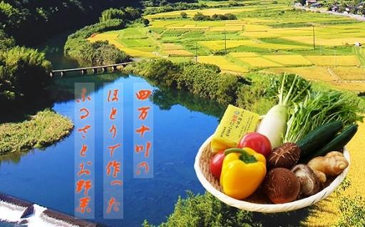 Sqf-01 定期便で家計をお助け!【少量多品種】四万十育ちのお野菜便6回