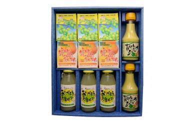 【E102】南国果汁青切りギフト【54pt】