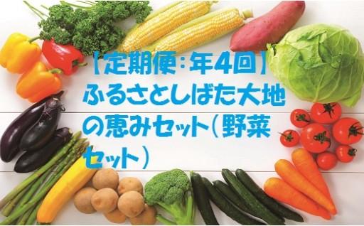C29 【定期便:年4回】 ふるさとしばた大地の恵みセット(野菜セット)