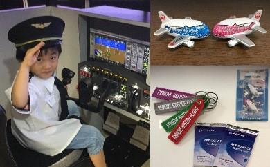 【R103】飛行機マグネット&パイロットが教える操縦体験20分【45pt】