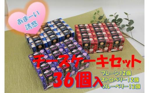 【B038】3種のレアチーズケーキセット