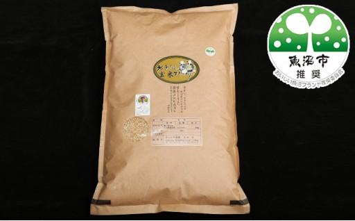[№5762-0289]北魚沼の旬米コシヒカリ【玄米】 5kg