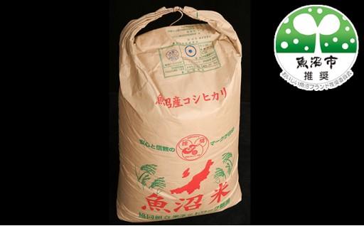 [№5762-0291]北魚沼の旬米コシヒカリ【玄米・半俵】 30kg