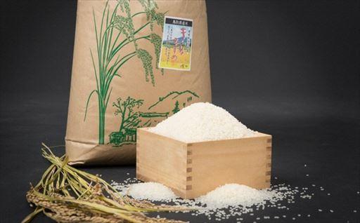 Y039 お米きぬむすめ15kg