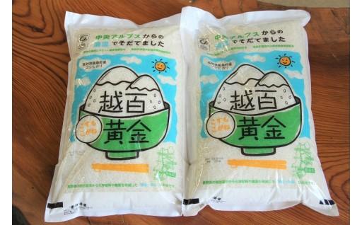 30 越百黄金(こすもこがね)米10kg(5kg×2袋)