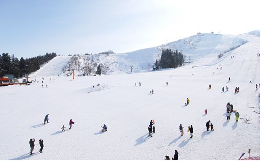 [№5762-0329]奥只見丸山スキー場・薬師スキー場 共通シーズン券