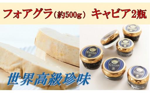 【H028】高級珍味2点セット(キャビア&フォアグラ)