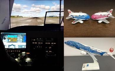 【R101】飛行機マグネット&飛行訓練装置1時間貸切プラン【135pt】