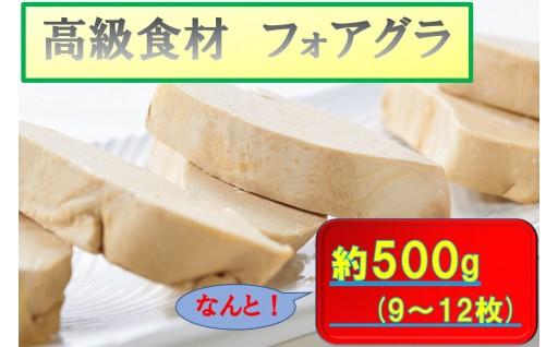 【G035】フォアグラ(9~12枚)約500g