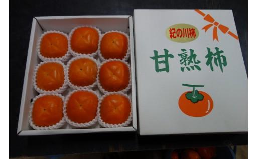 A17【古田農園】紀ノ川柿