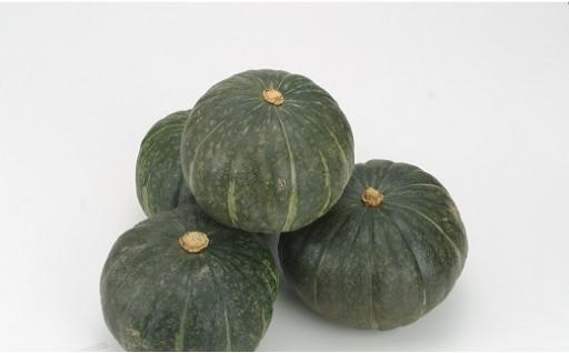 A20 かぼちゃ(粉質系)5~6玉 10kg