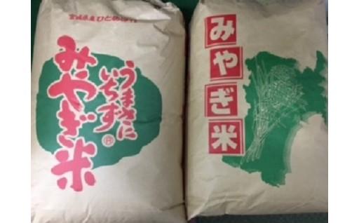 D002 玄米セット 60kg