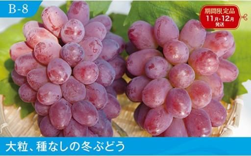 B-8 紫苑【3房】