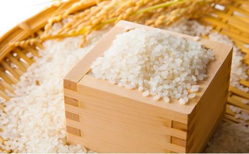 [№5862-0633]【4月申込限定】毎月10キロ×10回お届け 五ツ星お米マイスターのお米屋さんブレンド米と高品質米詰合せ10キロ