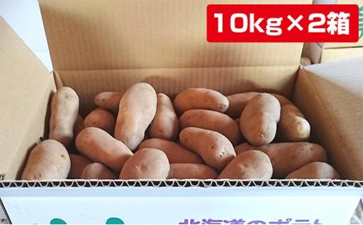 [№5539-0072]あっさぶメークイン10kg×2箱 計20kg