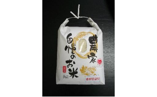 18012.【きらめきプロジェクト厳選商品】佐賀市産米さがびより