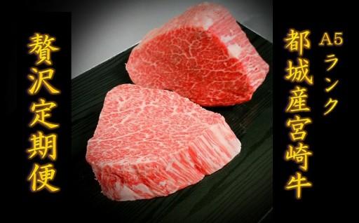T114(5)-0101_【2018年2月からお届け】都城産宮崎牛の贅沢定期便(5ヶ月)