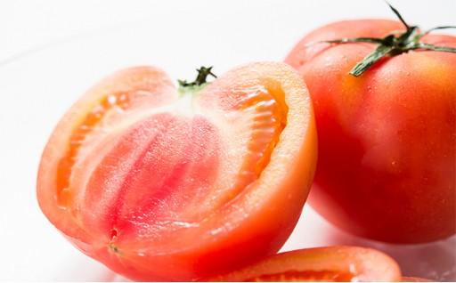[№5539-0006]塩トマト 約1.5kg