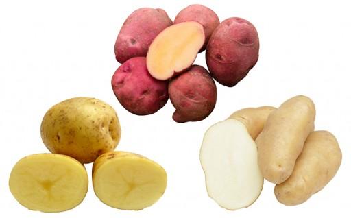 [№5539-0075]あっさぶメークイン、キタアカリ、レッドアンデス3品種のセット 約10kg