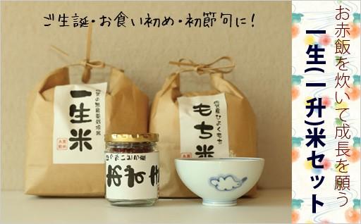 一生米セット 無農薬米さがびよりでお赤飯【有田焼】青花子ども茶碗付き
