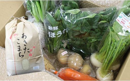 HMG287 八幡平市産 旬の野菜と美味しいお米あきたこまち白米5㎏セット