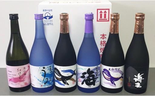 787 海の蔵!飲みくらべセットA(720ml×6本)