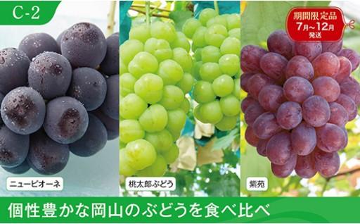 C-2 岡山のぶどう食べ比べセット