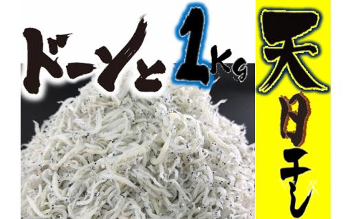 33.-(5)田渕水産のしらす干し1kg